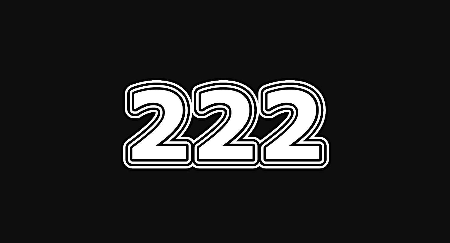 Angel Number 222