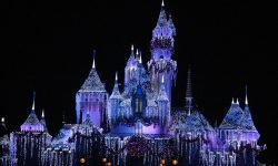 Dream of Disneyland: Meaning and Interpretation