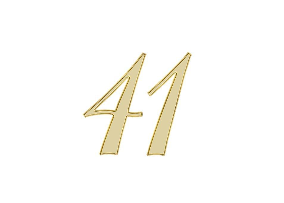 Angel Number 41