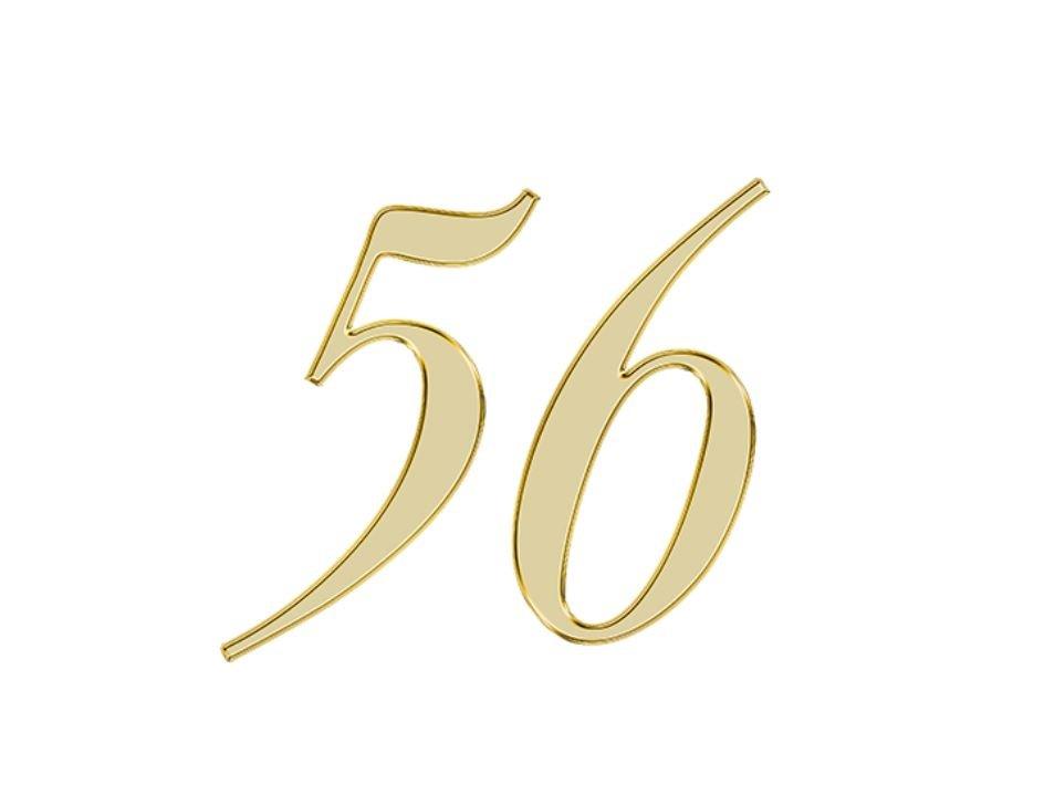 Angel Number 56