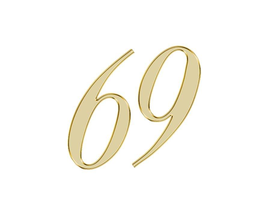 Angel Number 69