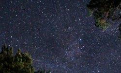 January 4 Zodiac: Astrological Sign and Horoscope