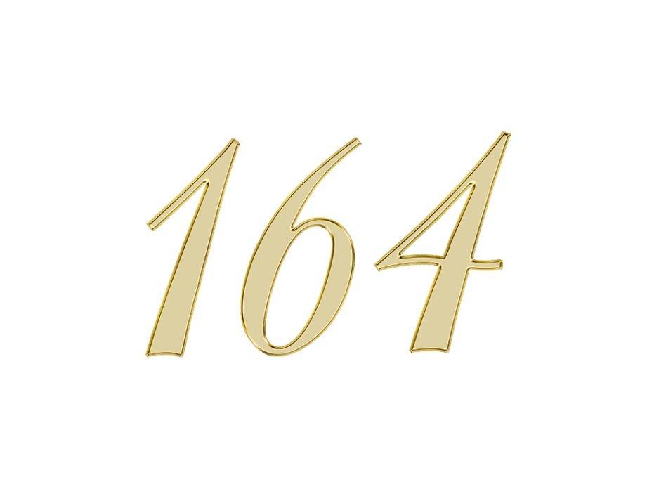 Angel Number 164