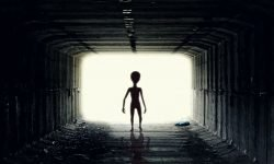 Aliens In Dreams: 18 Types & Their Meanings