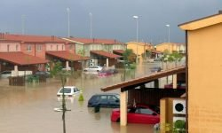 Dream About Flood: 21 Types & Their Meanings