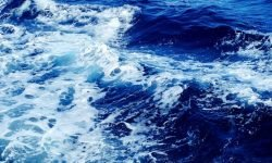Dreaming of Sea: 15 Types & Their Meanings