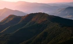 Mountain Dream: 13 Types & Their Meanings