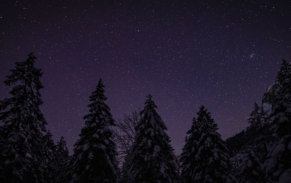 Dream About Stars
