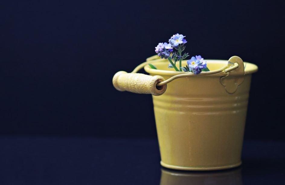 Bucket Dream